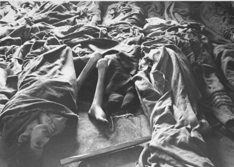 the horrors and nightmares that happened in auschwitz Find out more about the history of auschwitz, including videos, interesting articles  arbitrary executions, torture and retribution happened daily.